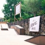 skatepark del surf camp